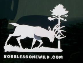 Bobble Buck Decal for Truck or Car