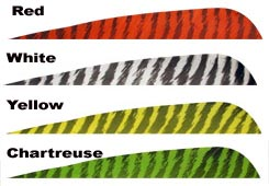 "Gateway 4"" Barred Parabolic Feathers 50pk."
