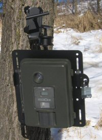 Perfect Aim Game Camera Mount