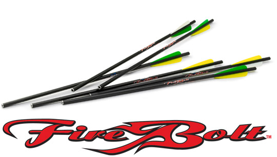 "Excalibur 20"" Carbon Bolts w/Vanes 6pk."